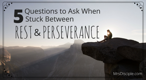 5 Questions to Ask When Stuck Between Rest and Perseverance