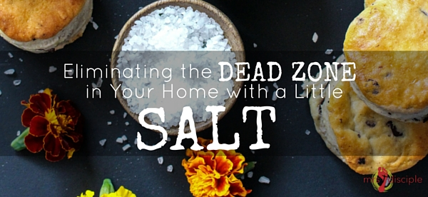 Eliminating the Dead Zone in Your Home with a Little Salt