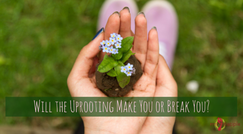 Will the Uprooting Make You or Break You- Move to a new city.