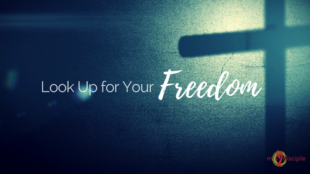 Look Up for Your Freedom in Christ